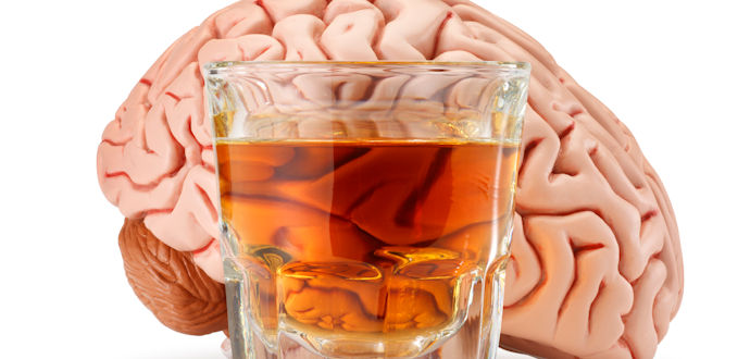 Brain On Alcohol - Solutions Education Cetner