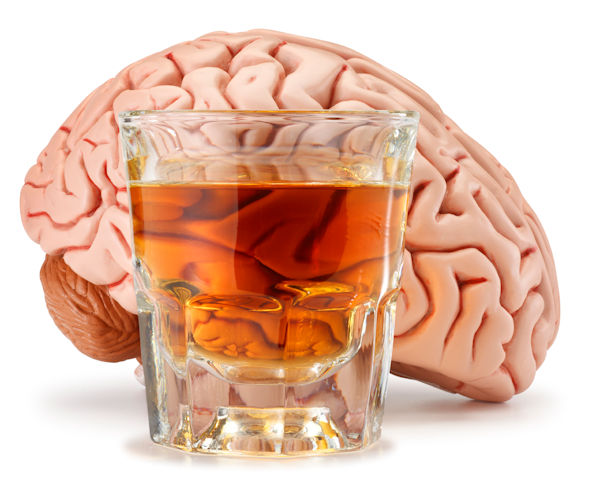 Brain On Alcohol - Solutions Education Center